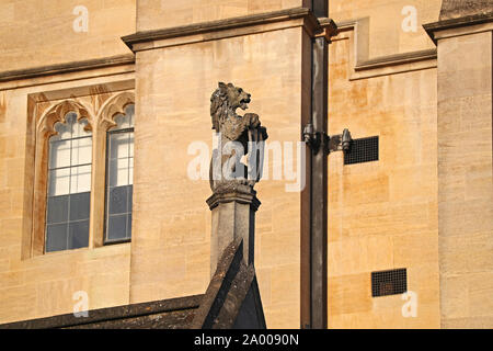 stonework detail from 1890s on New College Oxford in Holywell Street showing a lion holding a shield in honey coloured limestone or Cotswold stone - Stock Photo