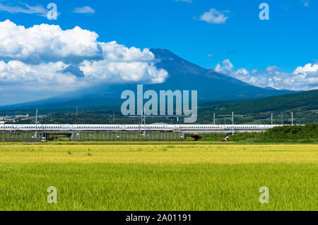 Shizuoka prefecture, Japan - September 3, 2016: Bullet train, Shinkansen travels below Mt. Fuji with bright ripe rice field, paddy on the foreground. - Stock Photo