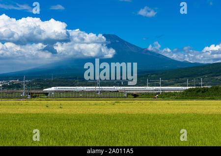 Shizuoka prefecture, Japan - September 3, 2016: Bullet train, Shinkansen travel below Mt. Fuji with bright ripe rice field, paddy on the foreground. I - Stock Photo
