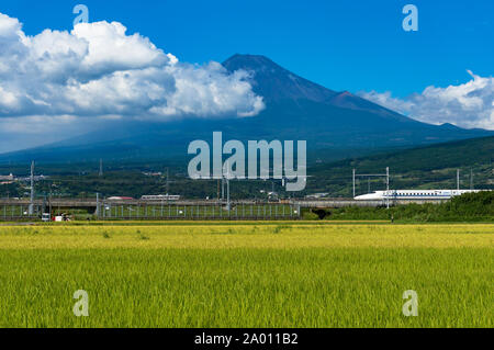 Shizuoka prefecture, Japan - September 3, 2016: Bullet train, Shinkansen travels below Mt. Fuji with green ripe rice field, paddy on the foreground. I - Stock Photo