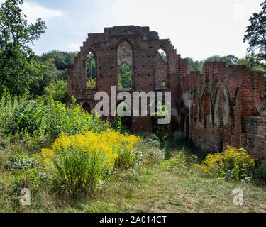 Monastery ruins Boitzenburg. Ruin of Cistercian monastery destroyed in Thirty Years War in 1637 in nature reserve. Now a protected listed building - Stock Photo