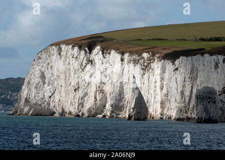 Studland, Dorset, England, UK. September 2019. White chalk cliffs of the Isle of Purbeck viewed from the sea. Ballard Down and the SW Coast Path - Stock Photo