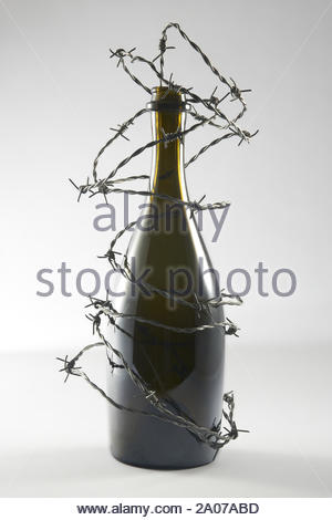 Barbed wire blocks alcohol bottle. Isolated on grey background. With copy space text. Studio Shot. - Stock Photo