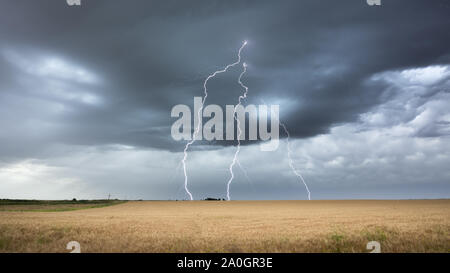 Dramatic storm and thunderbolt in a field of wheat. La pampa Argentina - Stock Photo
