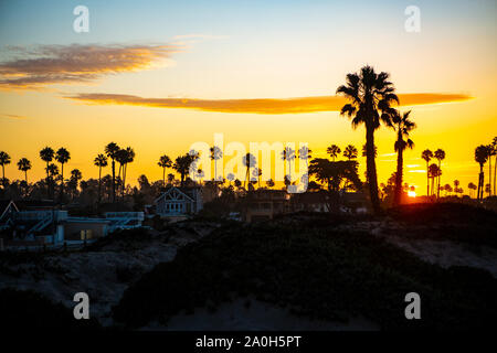 Sonnenaufgang hinter dem Palmenstrand am südlichen Ende von Big Sur in Kalifornien. - Stock Photo