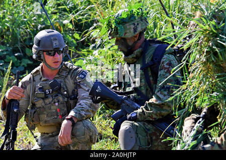 Yamato, Japan. 19th Sep, 2019. Sniper team of the US Army in the joint military training 'Orient Shield 2019' of the United States and Japan in the Oyanohara troop field. Yamato, 19.09.2019 | usage worldwide Credit: dpa/Alamy Live News - Stock Photo