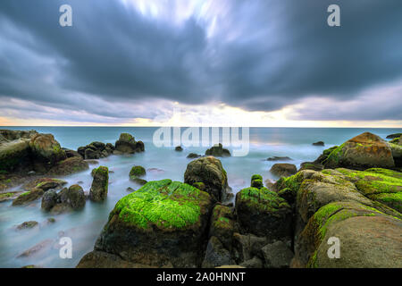 Green algae on rocks in the beach the dawn with dramatic sky to welcome the new day - Stock Photo