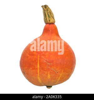 Hokkaido pumpkin close-up 3d rendering with realistic texture isolated on white background - Stock Photo