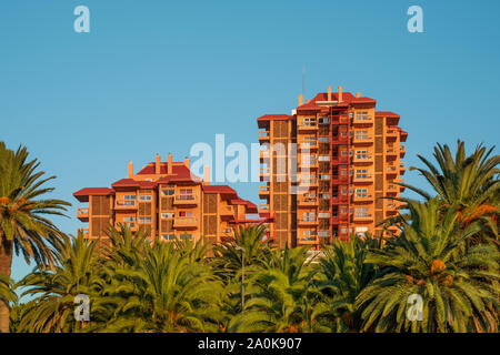 residential apartment buildings behind palm trees - real estate exterior - - Stock Photo