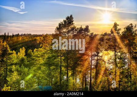 Bright sunset sun over deep forest. HDR landscape - Stock Photo