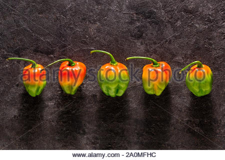 Five jalapeno peppers viewed from top on a dark stone background - Stock Photo