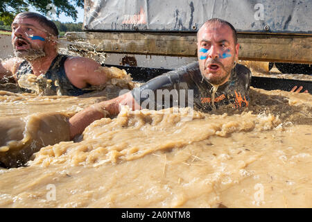 Horsham, UK. 21st Sep, 2019. Competitors take part in the Tough Mudder London South, The world-famous Tough Mudder is military style endurance obstacle course designed to test all-around strength, stamina, teamwork Credit: Jason Richardson/Alamy Live News - Stock Photo