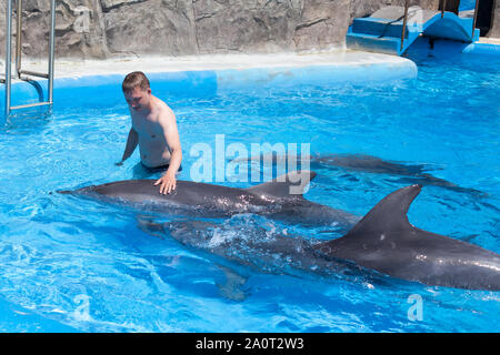 A young man, boy with big dolphins in blue water in water pool - Stock Photo
