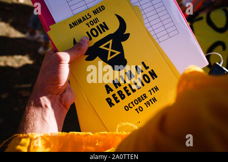 London, UK. 20th Sep, 2019. Leaflet of the Extinction Rebellion during the demonstrations. Credit: David Cliff/SOPA Images/ZUMA Wire/Alamy Live News - Stock Photo