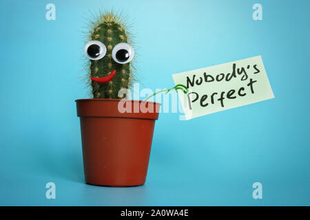 Nobody is perfect essay