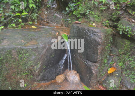 A small water fall or stream of water flowing between two big rocks in a mountain in shillong, cherrapunjee from a fresh green leaf - Stock Photo