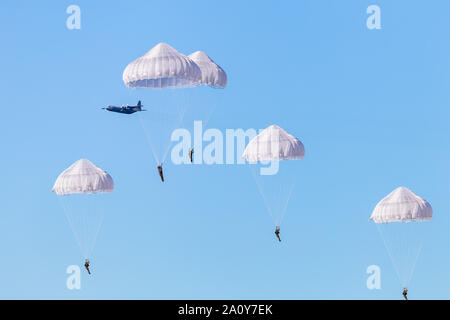 Ede, Netherlands, September 19, 2019: Paratroopers jumps Ginkel heath 75 years remembrance of Operation Market Garden WOII Arnhem in the Netherlands - Stock Photo
