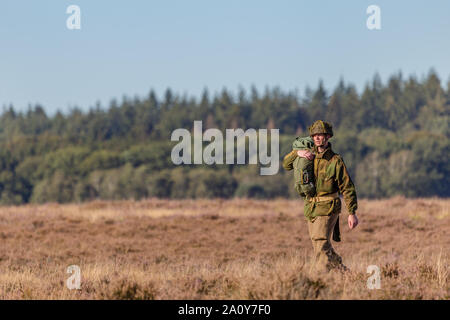 Ede, Netherlands, September 19, 2019: Paratroopers junps Ginkel heath 75 years remembrance of Operation Market Garden WOII Arnhem in the Netherlands - Stock Photo