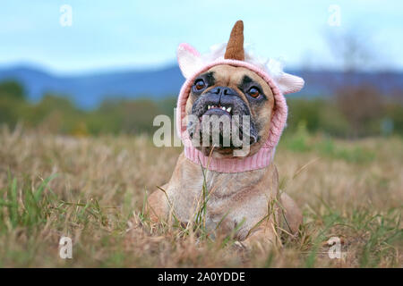 Funny French Bulldog dog with cute overbite lying down wearing a knitted unicorn hat Halloween costume - Stock Photo