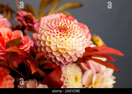 Floral composition of dahlia flowers, roses and autumn leaves. Arty, bright red and pink color  bouquet of flowers on grey background - Stock Photo