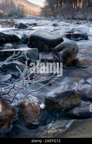 Ice forming on River Feshie, Cairngorm National Park, Scotland, UK - Stock Photo