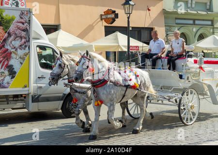 Two horses harnessed to a cart in Krakow street : Krakow, Poland - August 30, 2019 - Stock Photo