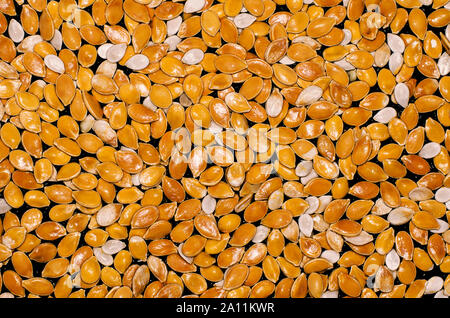 Lot of bright orange and white pumpkin seeds on a black background - Stock Photo