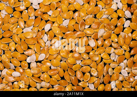Shiny wet orange and white pumpkin seeds on a black background - Stock Photo