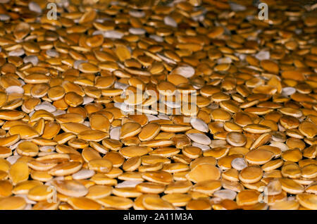 Orange and white pumpkin seeds in a dark place side view - Stock Photo