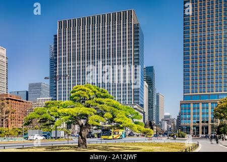 3 April 2019: Tokyo, Japan - High rise office buildings of Tokyo CBD, seen from the approach to Kokyo Gaien National Garden on Kajibashi Dori. - Stock Photo