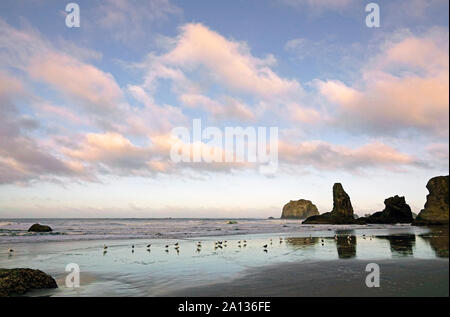 Surf rolls in soft patterns between the sea stacks on the beach near Bandon, Oregon, on the Pacific Coast of Oregon. - Stock Photo