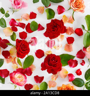 Flowers composition. Red roses on a white wooden background. Flat lay, top view. - Stock Photo