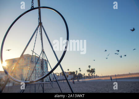 A flock of birds flying around travelling rings for exercise at muscle beach jungle gym on in Santa Monica, California at early morning - Stock Photo