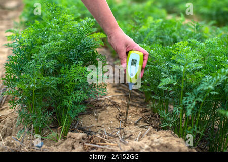 Measure soil with digital device. Green plants and woman farmer measure PH and moisture in the soil. High technology agriculture concept. - Stock Photo