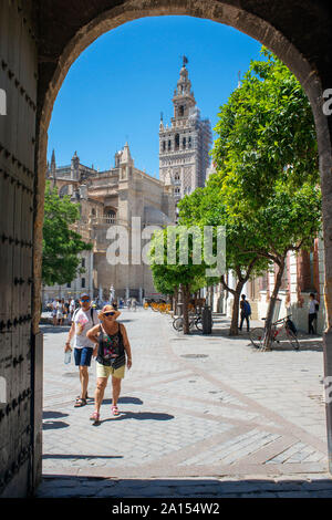 Giralda Seville, view of the 12th century Moorish tower known as La Giralda in the center of the Old City Quarter of Seville, Andalucia, Spain - Stock Photo