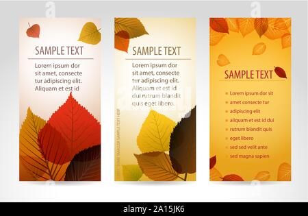 Fresh natural fall vector vertical banners with leafs and sample text - Stock Photo