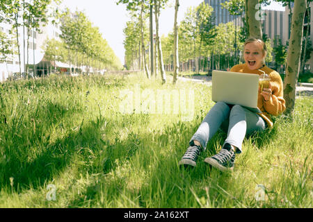 Portrait of excited young woman sitting on a meadow looking at laptop - Stock Photo