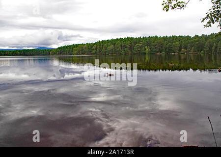 Loch Garten, Boat of Garten, Nethy Bridge, Scottish Highlands, Cairngorms, Scotland - Stock Photo