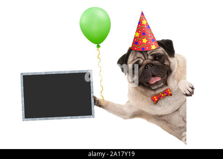 frolic smiling birthday party pug dog, with balloon and hat decoration holding blank blackboard sign, isolated on white background - Stock Photo