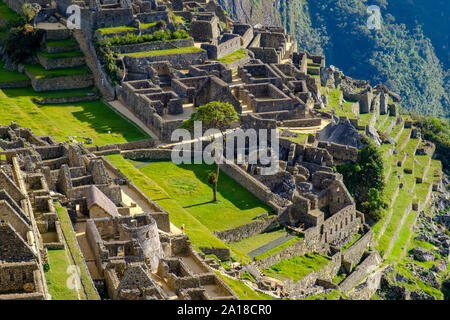 Machu Picchu sunrise, Sacred Valley of the Incas, Peru. View of gardens and terraces, Machu Pichu, early morning. - Stock Photo