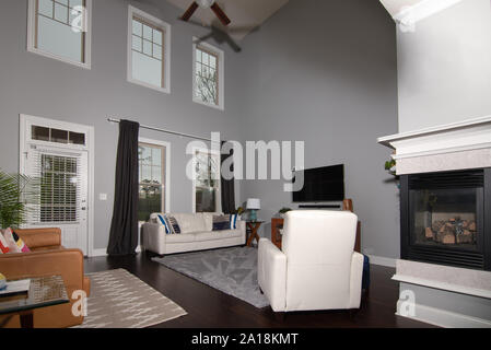 Typical contemporary middle class living room in southern United States - Stock Photo