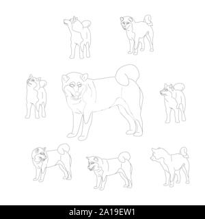 Set of shiba inu dogs. Isolated on white background. Flat style monochrome black and white cartoon stock vector - Stock Photo