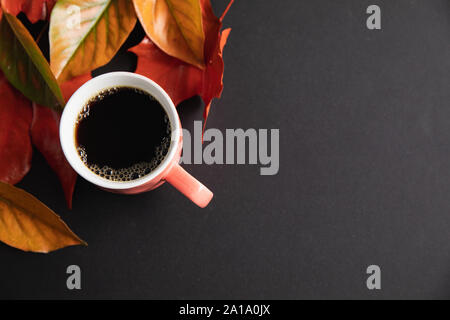 Autumn flat lay with coffee cup - Stock Photo