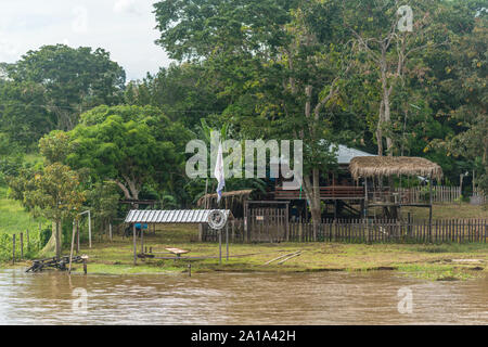 Obersations on a two-day boat trip from Manaus to Tefé, Rio Solimoes, Amazonas, The Amazon, Brazil, Latin America - Stock Photo