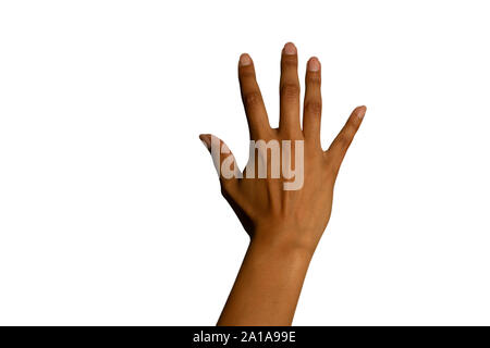 Back of the hand of a woman - Stock Photo