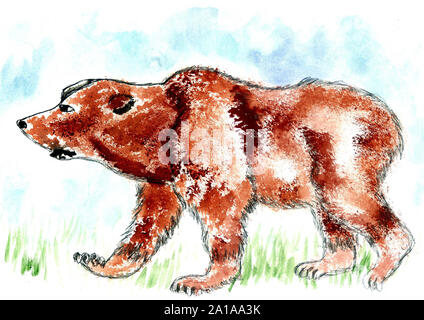 Watercolor painting of brown bear, hand drawn illustration. - Stock Photo