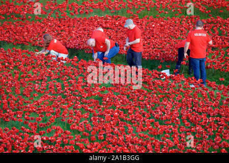 Volunteers at the Tower of London Blood Swept Lands and Seas of Red art installation. - Stock Photo