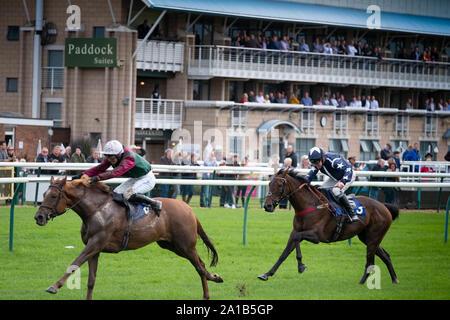 Warwick Racecourse, warwick UK - Stock Photo