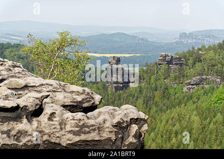 Elbe Sandstone Mountains - view from 'Gohrisch' in slightly misty weather, foreground a sandstone rock with a birch, background part of 'Papststein' a - Stock Photo