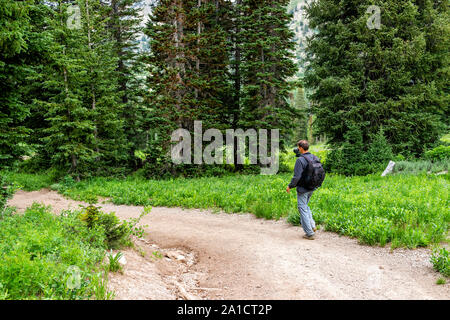 Albion Basin, Utah summer trail in 2019 season in Wasatch mountains with man walking carrying gimbal camera - Stock Photo